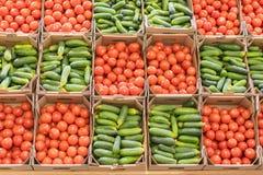 Pomidory i ogórki w pudełkach w sklepie Piękny tło warzywa zdrowe jeść Jedzenie dla jaroszy Zdrowy Li zdjęcia stock