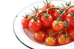 pomidory kratownicowi wiśnie fotografia royalty free
