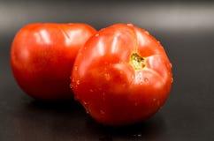 Pomidory makro- Zdjęcie Stock