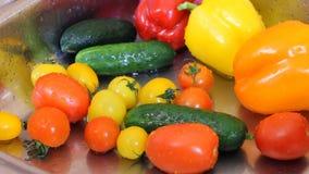 Pomidory myje z czystej wody pluśnięcia kroplami HD zbiory wideo