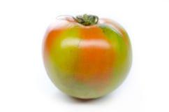 Pomidory na biel Zdjęcia Stock
