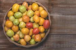 Pomidory na drewnianym tle Obrazy Royalty Free