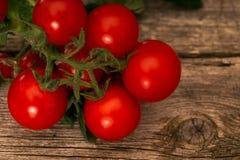 Pomidory na nieociosanym drewnianym tle obrazy royalty free
