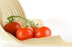 Pomidory na winogradzie z koszem Obrazy Stock