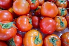 Pomidory oczekuje sprzedaż fotografia stock