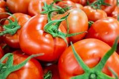Pomidory oczekuje sprzeda? obraz stock