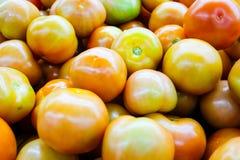 Pomidory od rynku zdjęcia stock