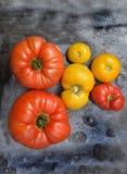pomidory organicznych obrazy stock