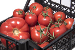 Pomidory różni rozmiary w pudełku dla warzyw Obrazy Royalty Free