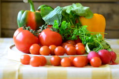 Pomidory, rzodkwie, pieprze i pietruszka na drewnianej ciapanie desce, zdjęcie stock
