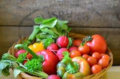 Pomidory, rzodkwie, pieprze i pietruszka w łozinowym handbasket, zdjęcia stock