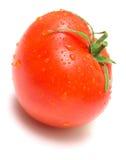 pomidory w izolacji Zdjęcia Stock