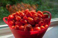 Pomidory w koszu Obraz Royalty Free
