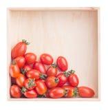 Pomidory w pudełku odizolowywającym Zdjęcia Royalty Free