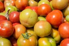 Pomidory w rynku Zdjęcie Stock