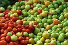 Pomidory w rynku Obraz Stock