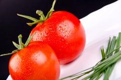 Pomidory w talerzu Zdjęcie Royalty Free