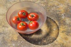 Pomidory w talerzu Obraz Stock