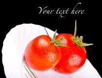 Pomidory w tekscie i talerzu Obraz Stock