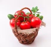 Pomidory w wattled koszu Zdjęcie Royalty Free