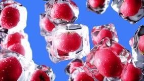 Pomidory wirują w kostkach lodu Jedzenia i transmisi pojęcie Realistyczni lodowi materiały 4K animacja zielony ekran royalty ilustracja