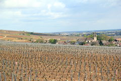 Pommard and the vineyards of Burgundy Royalty Free Stock Images