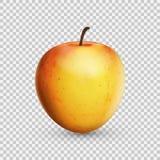 pomme 3D réaliste d'isolement sur le fond transparent Illustration de vecteur Photo libre de droits