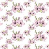 Pomme de floraison de modèle sans couture, illustration stock