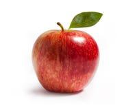 Pomme de gala de Rayal sur le blanc Photographie stock libre de droits