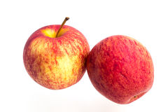 Pomme de gala sur un fond blanc Image stock