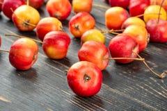 Pomme de paradis de fruit photos libres de droits