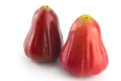 Pomme de Rose Images libres de droits