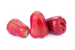Pomme de Rose d'isolement sur le blanc Photos libres de droits