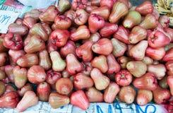 Pomme de Rose mûre Photos libres de droits