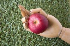 Pomme de rouge de prise de main images stock