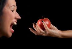 Pomme de tentation Photographie stock libre de droits