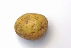 Pomme de terre Images stock