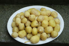 Pomme de terre Photo stock