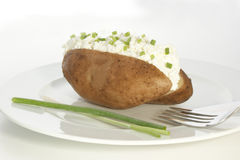 pomme de terre avec le formage caillé et l'aneth Photographie stock libre de droits