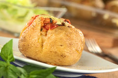 Pomme de terre cuite au four Image stock