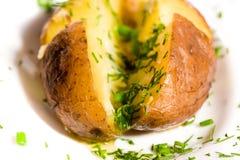 Pomme de terre cuite au four Image libre de droits