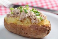 Pomme de terre cuite au four avec de la salade de thon Photographie stock libre de droits