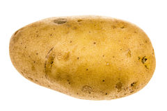 Pomme de terre d'isolement sur le fond blanc Image libre de droits