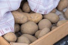 Pomme de terre dans la boîte photo libre de droits