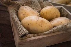 Pomme de terre dans le plateau en bois image stock