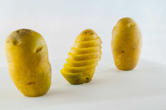 Pomme de terre de primeurs d'isolement sur la fin blanche de fond vers le haut Image libre de droits
