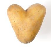 Pomme de terre en forme de coeur sur le fond blanc Photographie stock libre de droits