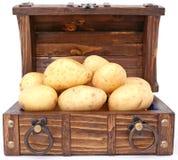 Pomme de terre - le trésor et la devise de l'Irlande Images libres de droits