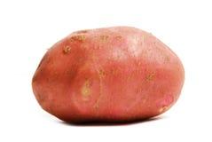Pomme de terre rouge Photographie stock