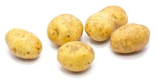 Pomme de terre sur le blanc photographie stock libre de droits